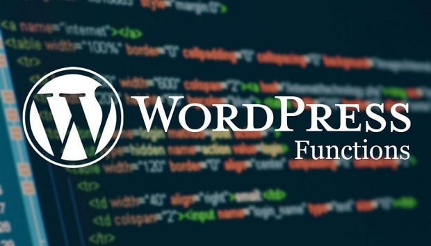 wordpress kod ekleme
