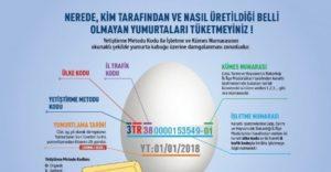 Yumurta - Yumurta Kodları - Yumurta Şifreleri