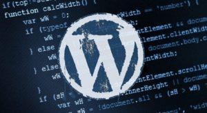 WordPress - WordPress Altbilgi Kaldırma