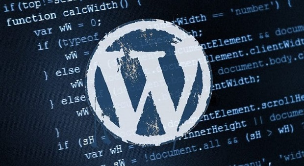 WordPress - WordPress Altbilgi Kaldırma