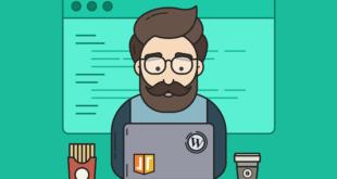 WordPress - WordPress Geliştiricisi Nasıl Olunur - WordPress Geliştiricisi Olmak
