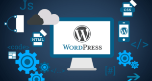 WordPress Eğitimi - Udem WordPress Eğitimi