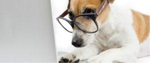 Blog Nasıl Açılır - Blog Açmak
